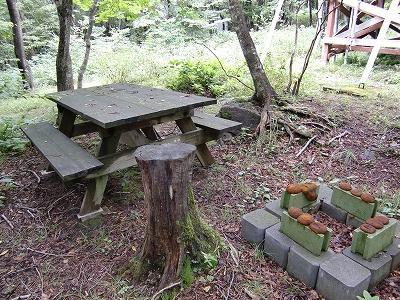 realestate-栃木県那須塩原市-ログハウス-ピクニックテーブル