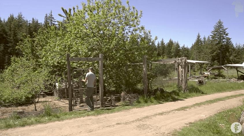 農場で自給自足の生活