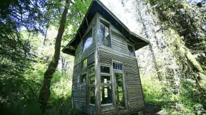 「自然とのつながりを大事にしたい」人里離れた森の中のキャビンで暮らす男性