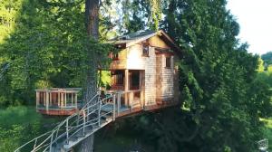 「ストレスを忘れ、童心に返ることができる」高級ツリーハウスを建築する男性