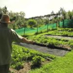 パーマカルチャー農場を営む男性